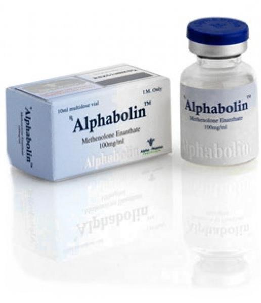 Methenolone enanthate (Primobolan depot) – Alphabolin (vial)